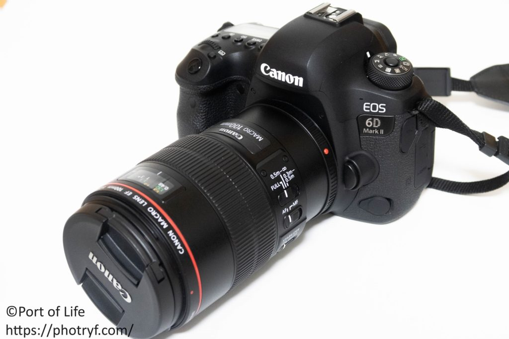6D2と100mmマクロレンズの写真