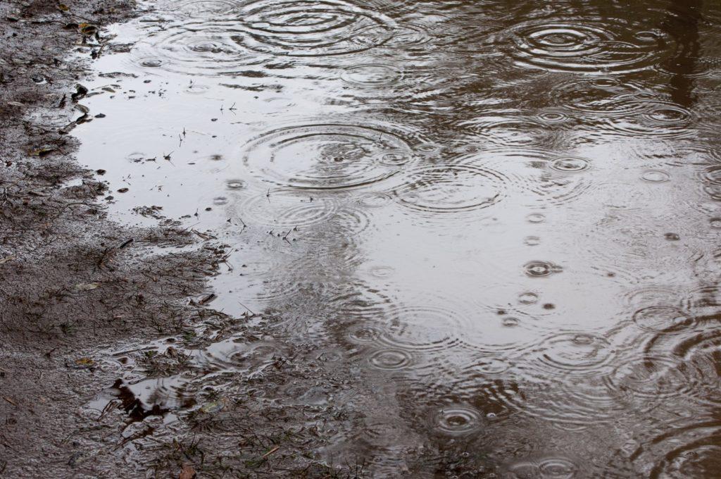 雨の多い梅雨の水たまり