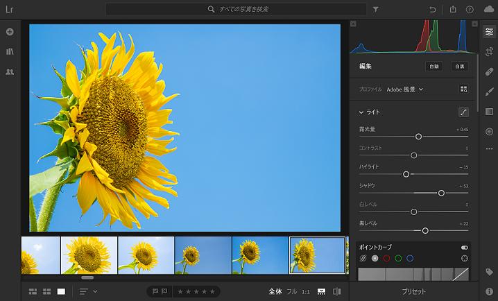 写真現像ソフトライトルームのレタッチ画面
