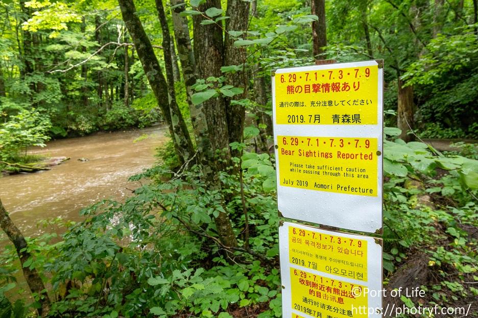 奥入瀬渓流のクマ出没情報看板