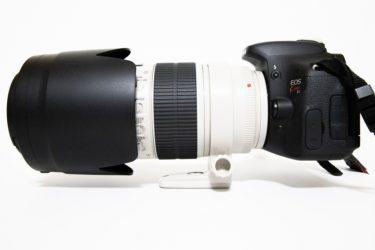 【作例】初心者向けカメラボディとプロ向けレンズの組み合わせで撮影して分かったこと