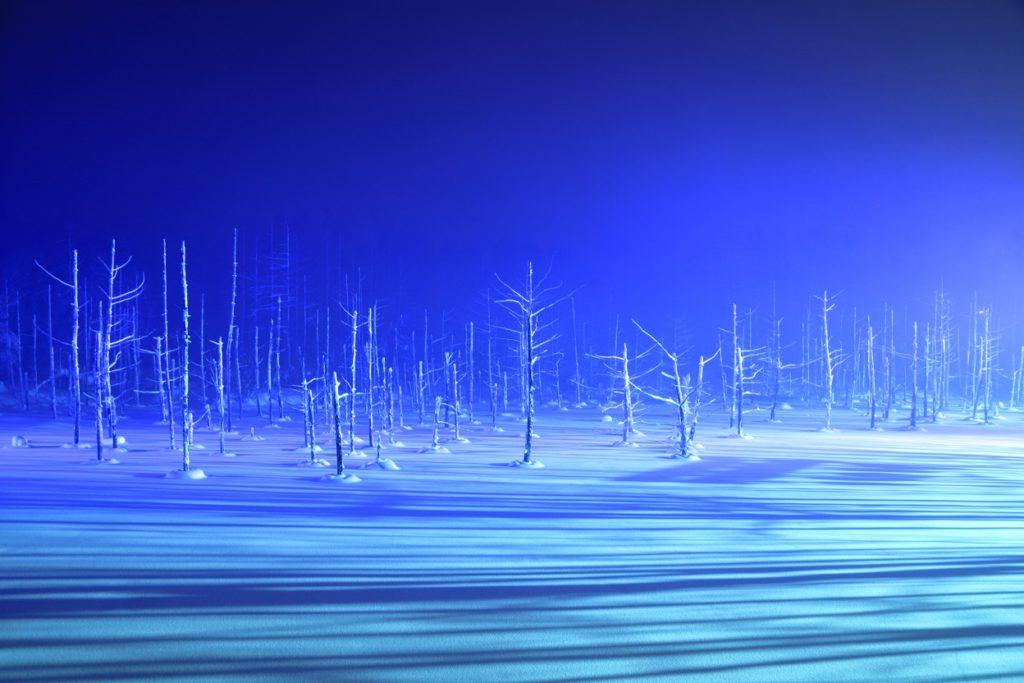 北海道美瑛町の青い池
