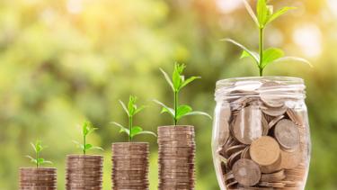 【ブログ収益化への道】2019年の運営実績の振り返りと2020年の目標