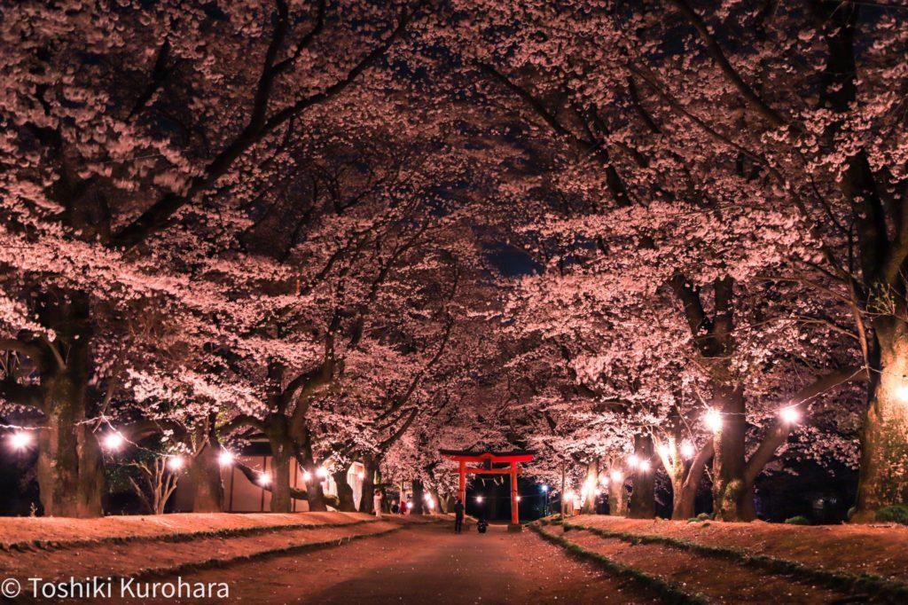 茨城県の東蕗田天満社の写真